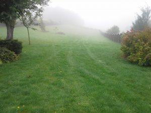Wertykulacja, areacja, nawożenie, dosiewki trawy Wiosna 2017